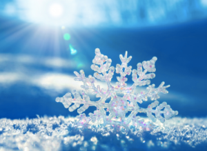 Energetically Freezing Somone Out of Your Life Dana Atkin Kinesiology